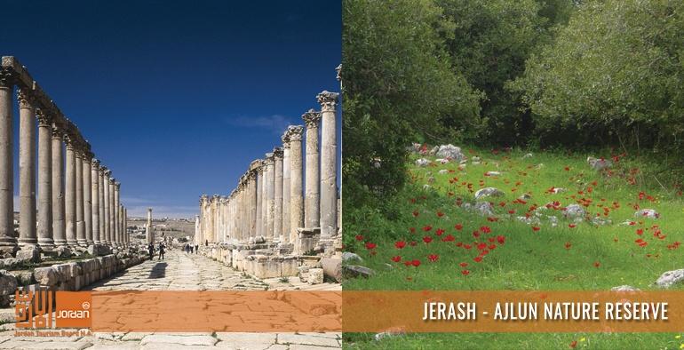 Jerash - Aljun Nature Reserve
