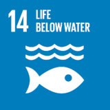Life-Below-Water