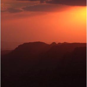 Screen Shot 2021-03-03 at 4.49.29 PM
