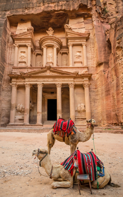 Portrait Image of Petra