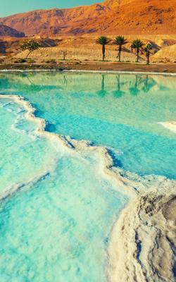 Portrait Image of The Dead Sea